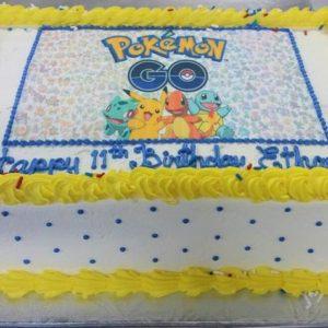 """9""""x13"""" double cake"""